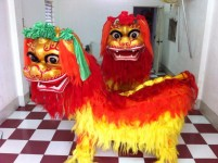 Múa kỳ lân múa sư tử